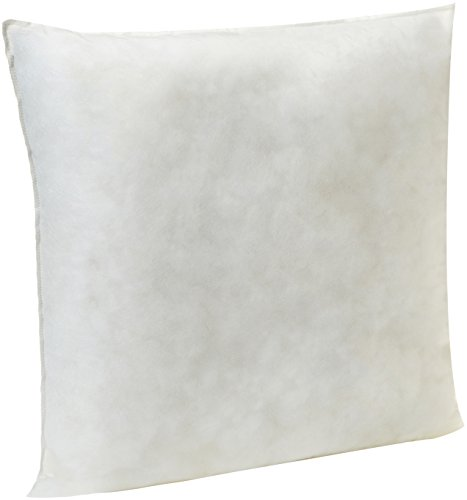 AmazonBasics Pillow Insert - 22-Inch Square, Single