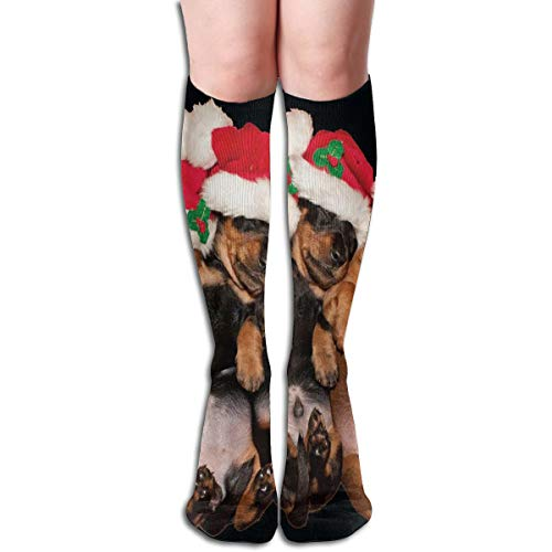 (Socks Cute Comedy Santa Dogs Puppies Fabulous Womens Stocking Decoration Sock Clearance for Girls)