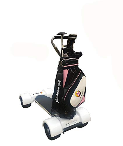 Amazon.com: How True - Patinete de golf eléctrico con 4 ...