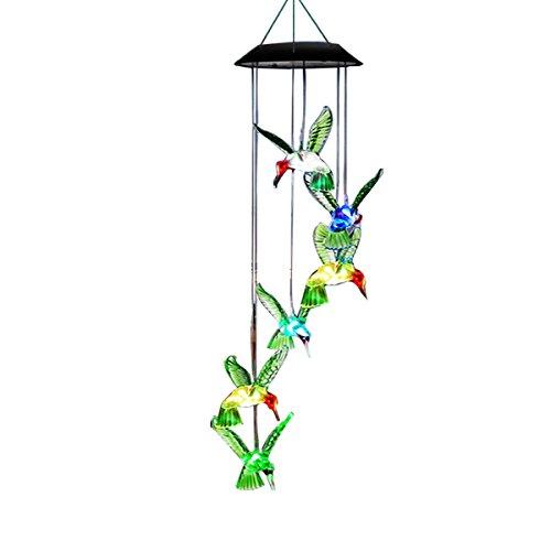 Outdoor Hummingbird Solar Lights in US - 5