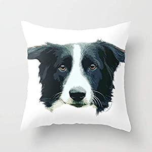 FJPT Throw Pillow Cover Ruka The Border Collie Portrait Cotton Pillowslip for Sofa Bed Stand Size Pillowcase 26x26 Inch 1