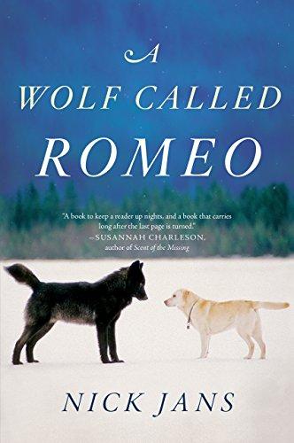 :HOT: A Wolf Called Romeo. Historic ratio Arturo cuando State Rotula