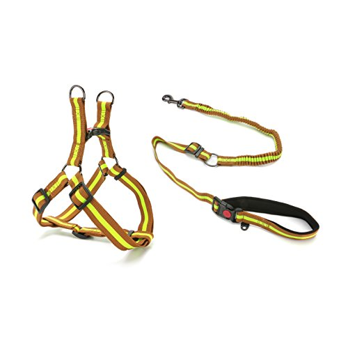 Ribbon Dog Harness - DoggieKit Pull-Proof Dog Leash & No-Choke Harness Combination Set, Thick Nylon Ribbon Walking Safety Combo for Small, Medium & Large Dogs (L, Green on Brown)