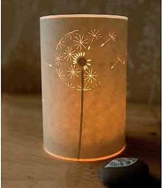 Lámpara de pie 1 diente lumi ¨ ¨ re Zapata pergamino pantalla para lámpara: Amazon.es: Iluminación