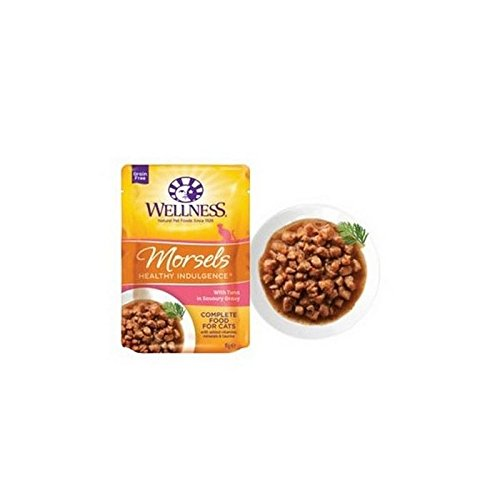 Wellness Healthy Natural Grain Free Cat Food Morsels - Wellness Dog Food Seafood