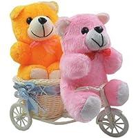 Sky Trends Romantic Valentine Love Couple Teddy Basket Cycle Valentine Romantic Teddyss Bears Gifts for Wife Girlfriend Boyfriend Fiance-004