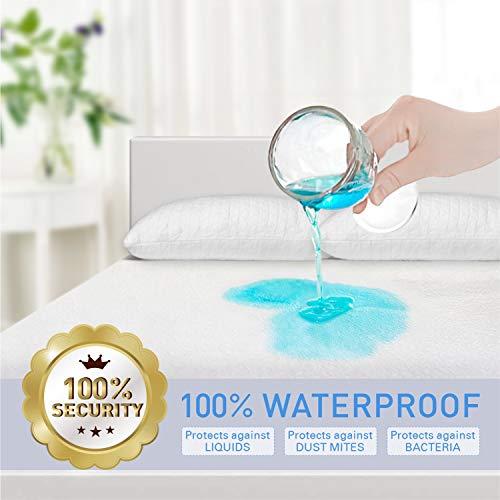 Adoric Mattress Protector Zippered Mattress Encasement Premium Waterproof Mattress Cover Queen Size Cotton Terry Surface-Vinyl Free
