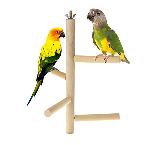 - Bird Heated Perch,Cockatiel Playpen,Parrot Cage Stand,Budgies Climbing Station,Wooden Branches,Parakeet Cages Accessories,Chew Toys for Canaries Cockatiels Cockatoo