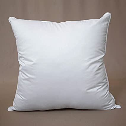 Amazon Clearance Sale Luxury Feather And Down Euro Pillow Beauteous 30 Inch Euro Pillow Inserts