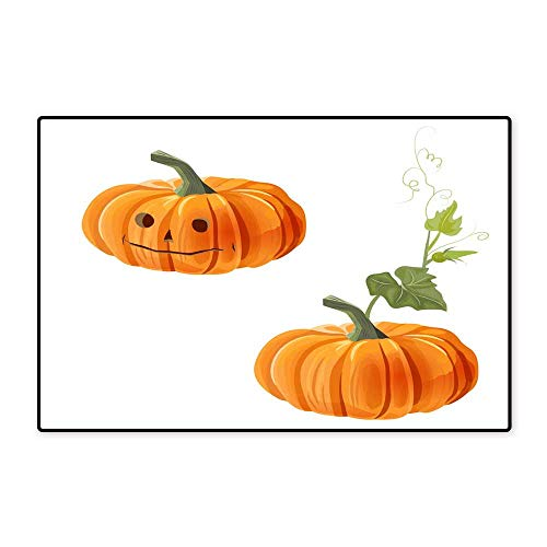 Door Mats for insideTwo Orange Pumpkins one with Leaf and Other with Eyes Nose and Mouth on White Background Digital Draw Decorative Illustration for Autumn Harvest Festival or Halloween Design vecto