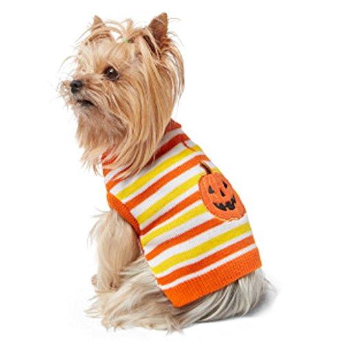 Martha Stewart Halloween Costumes For Dogs (Martha Stewart Pets Pumpkin Striped Pet Dog Costume Sweater)