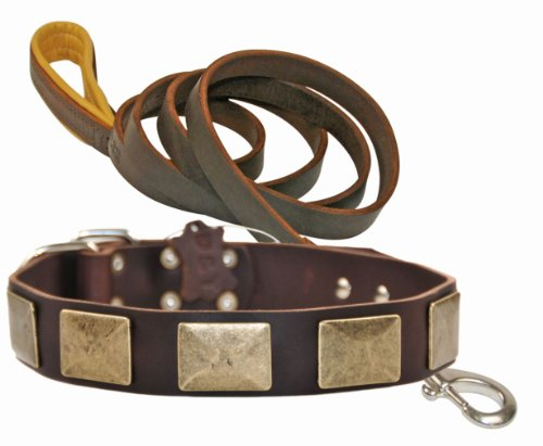 Dean and Tyler Bundle One Brass Plate Collar 36-Inch by 1-1/2-Inch with One Matching Soft Touch Leash, 6-Feet Stainless…
