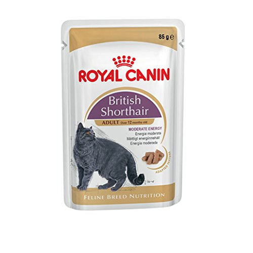 Royal Canin -Feline Breed Nutrition Wet British Shorthair Adult, 12x85g