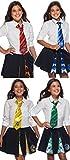 Rubie's Harry Potter Adult/Child Tie's Costume Accessory Set