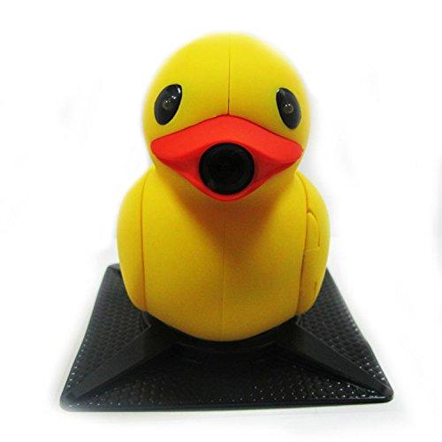 Inside Duck - 8