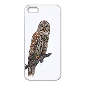 Owl art Hard Shell Cell Phone Case Cover for For iphone 6 plus Case color2