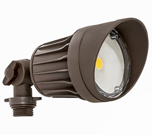 10W Led Flood Light Lumens