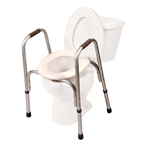 PCP Raised Toilet Seat with Safety Frame Two-in-One, Silver Frost
