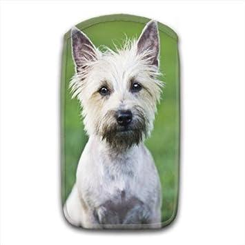 Weicher Stoff Weiß Cairn Terrier Dog Socke Amazonde Elektronik