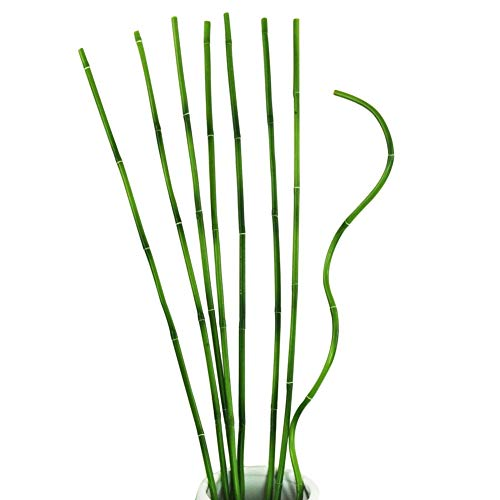 Pursuestar 5 PCS 23inches Green Lucky Bamboo Bendable Iron Wires Artificial Floral Flower Stub Stem Handmade DIY Craft Home Wedding Decoration 60cm x 6.5mm