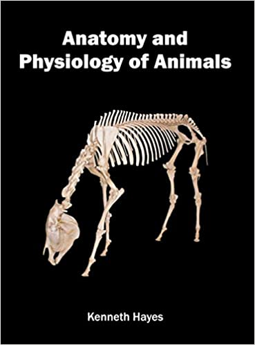 Download online Anatomy and Physiology of Animals PDF, azw (Kindle)