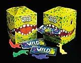 J&J Wild Flosser 144/Pk