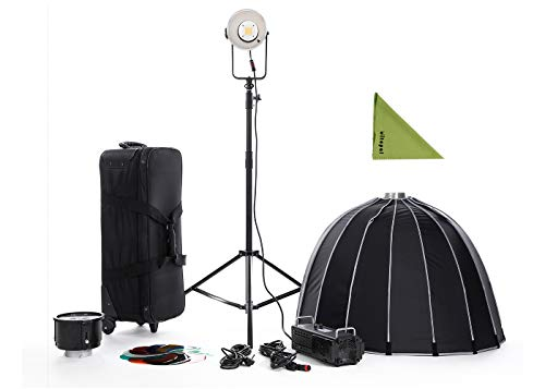 (Falcon Eyes BL-30TD Kit 300W Bowens Mount Studio Continuous LED Bi-Color 3000K-8000K with LMC Light Stand,PSB-9 Soft Box)