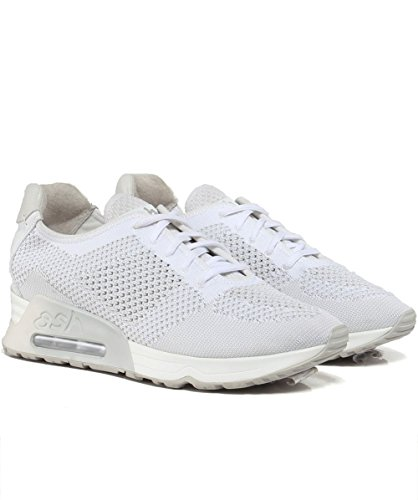 Knit Trainers EU41 White Womens US10 Lucky White Off ASH UK8 w6Ax5qtW