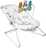 Fisher-Price Baby's Bouncer, Green/Blue/Grey (DTG94)