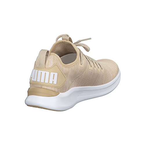 Puma Herren Ignite Flash Evoknit Cross-Trainer Outdoor Fitnessschuhe Beige (Pebble-WHISPER White-Puma White)