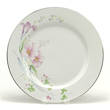 Amazon.com | Pink Vista by Studio Nova, China Dinner Plate: Dinner ...