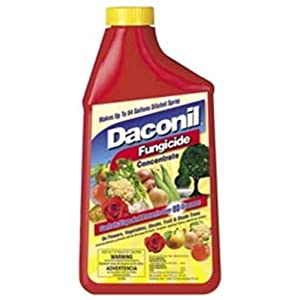 Daconil Fungicide Concentrate 16 oz. - 100523634
