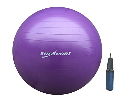 SUESPORT 65cm Anti-Burst Gym Ball Kit With Pump,3-Size Available, Purple