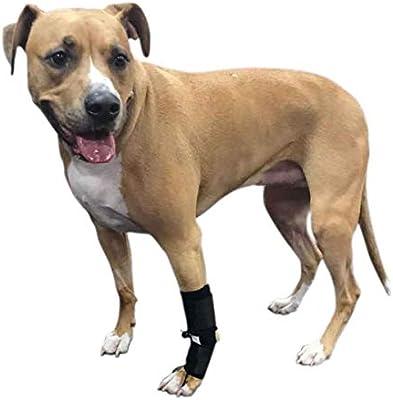 Amazon com : Walkin' Front No-Knuckling Training Sock Helps