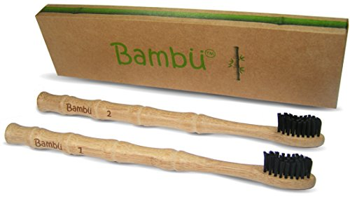 Bambu Toothbrush: charcoal infused bristles with bamboo wood handle