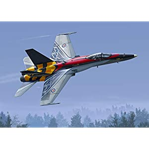 McDonnell F-4B Phantom II VF-111 Sundowners Review 5