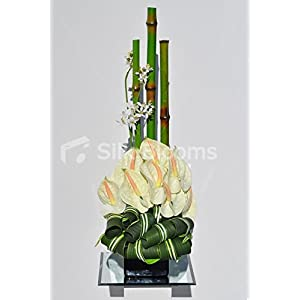 Modern Artificial Lemon Anthurium, Orchid and Bamboo Floral Table Arrangement 70