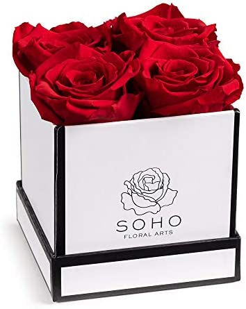 Soho Floral Arts | Roses in A Box | Real Roses Last A Year or More (White Square 4ct, Red) | Mothers Day Gifts | Gifts for Mom