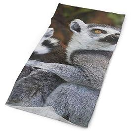 Animals Lemurs Wild Nature Face Mask UV Sun Mask Dust Wind Neck Gaiter Magic Bandana