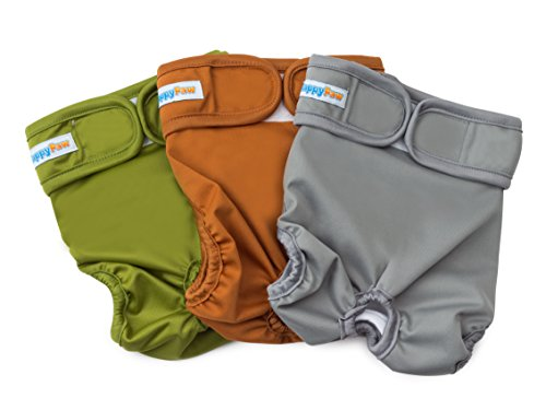Reusable Washable Dog Diapers - Size Medium - (3 Pack) - Durable Dog Wraps for both Male and Female Dogs - Premium Quality (What To Put Into A Care Package)