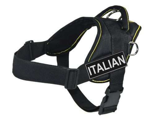 Dean & Tyler DT Fun Harness, Italian, Black With Yellow Trim, Small Fits Girth Size  22-Inch to 27-Inch