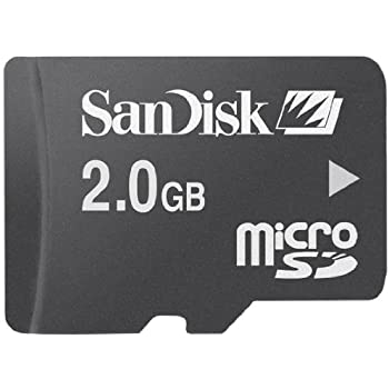 Amazon.com: Transcend 2 GB microSD Flash Memory Card TS2GUSD ...