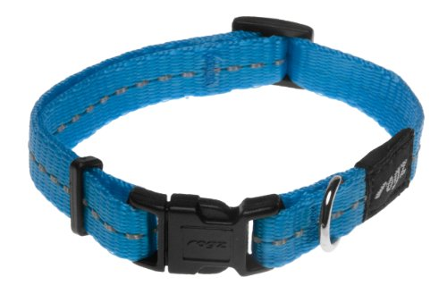 Rogz Utility Small 3/8-Inch Reflective Nitelife Dog Collar, Turquoise, My Pet Supplies