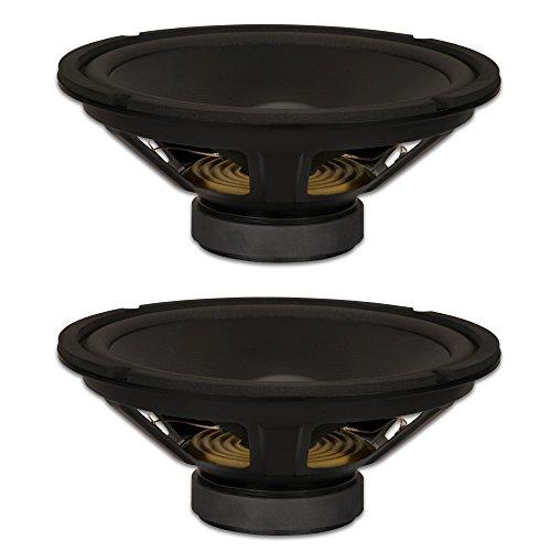 Goldwood Sound, Inc. Stage Subwoofer Dual Voice Coil 10