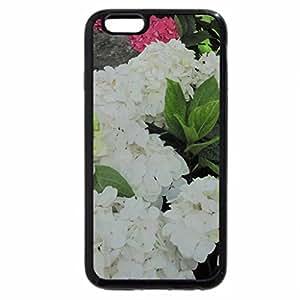 iPhone 6S / iPhone 6 Case (Black) Hydrangea date with my Camera 29