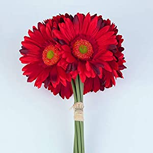 S.Ena 1 Branch 1 Head Artificial Silk Fake Flowers Gerbera Daisy Wedding Floral Home Decor Bouquet Birthday Party DIY, Pack of 14 (Red) 4