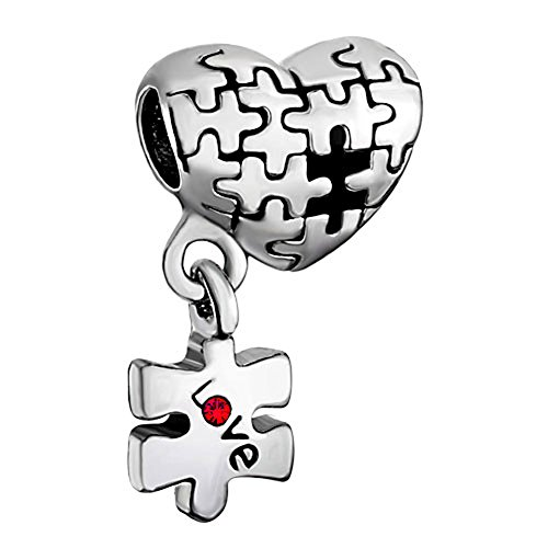 ism Awareness Puzzle Heart Love Charm Beads For Charm Bracelets ()