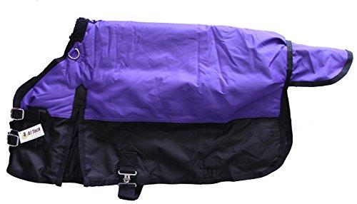 Miniature Horse 600D Medium Weight Water Proof Blanket Purple, 36'
