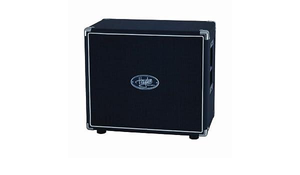 Hayden Amps 118-20 - Amplificador para guitarra: Amazon.es ...