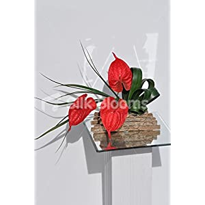 Artistic Red Artificial Anthurium Floral Table Arrangement w/ Green Bear Grass 18